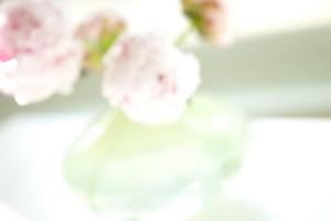 Flowers - Debbie Sasson & Melissa Zdrodowski